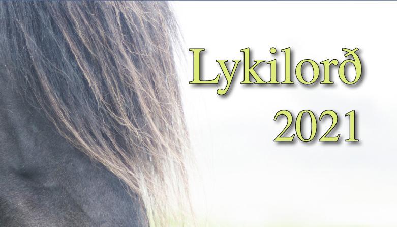 Lykilorð 2021