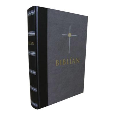 Biblían 1981 þýðing